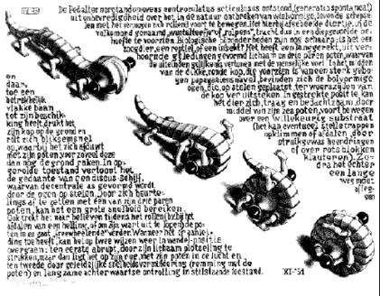 Escher-Curl-up_Fotor